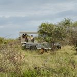 Singita Sweni Lodge Activities