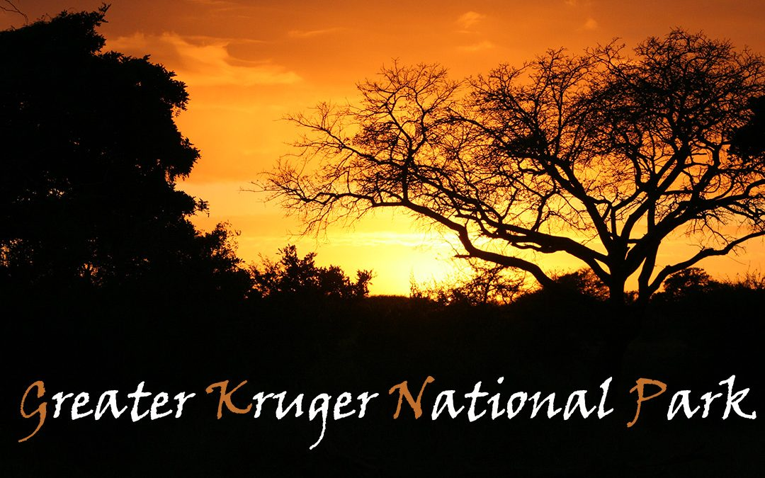 Greater Kruger National Park