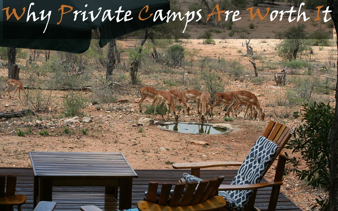 Are Private Camps Worth The Money