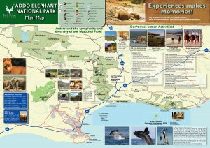 Addo Elephant National Park Map