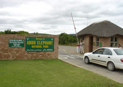 Welcome To The Addo Elephant National Park