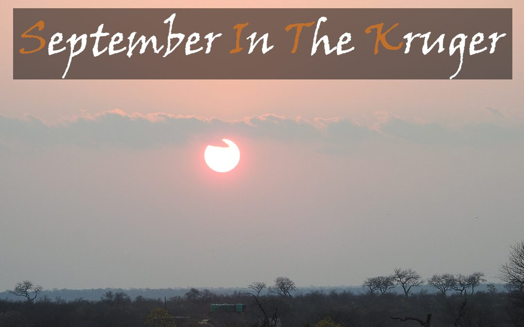September In The Kruger National Park