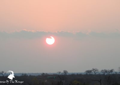 Kruger National Park Sunset Close To Maroela