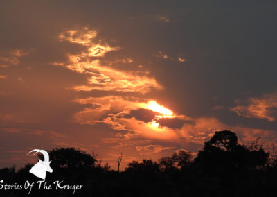 Beautiful Sunset Close To Hippo Pools Kruger Park
