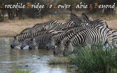 Crocodile Bridge To Lower Sabie