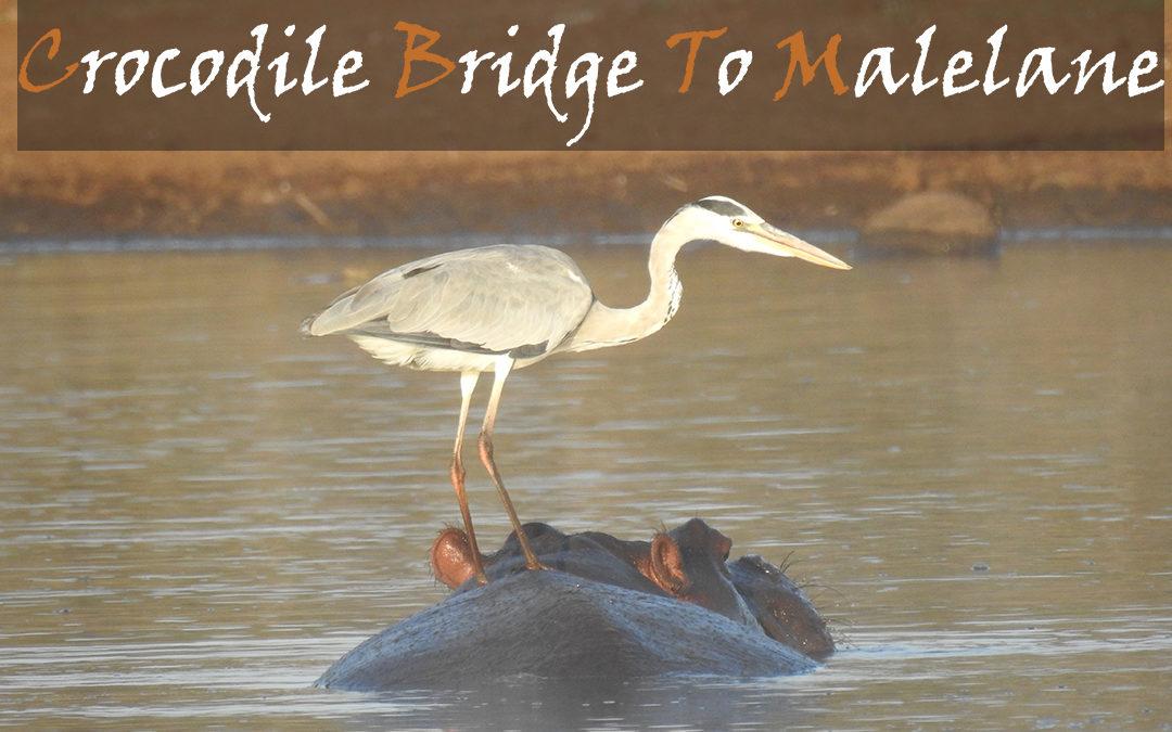 Crocodile Bridge To Malelane Gate