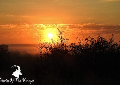 Sunrise At Crocodile Bridge Kruger Park
